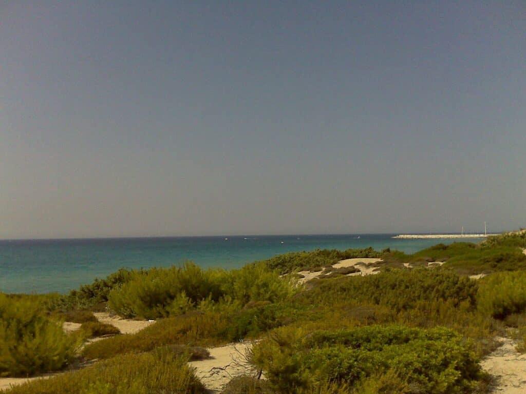 La spiaggia di dune di Campomarino